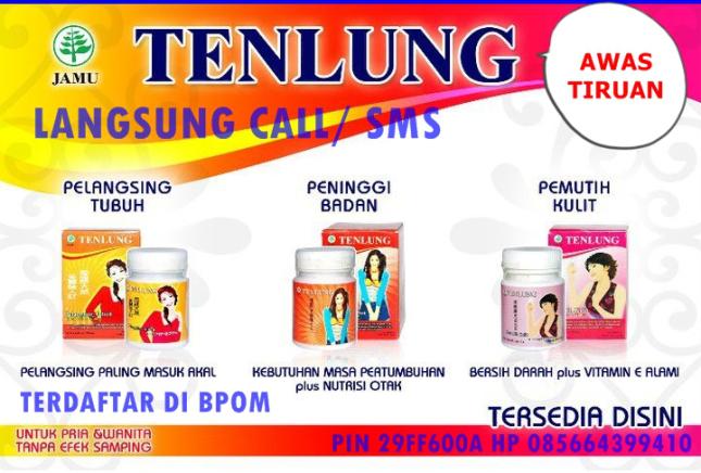 tenlung-bnner-2